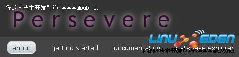 三十五个非主流开源数据库 MongoDB领衔主演