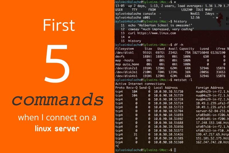 当我连接到 Linux 服务器时运行的前 5 个命令