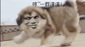 图5:如何撩到一枚闷骚的程序猿