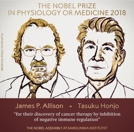 2018年诺贝尔生理学或医学奖公布:美日科学家分享