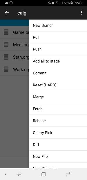 MGit push/pull settings